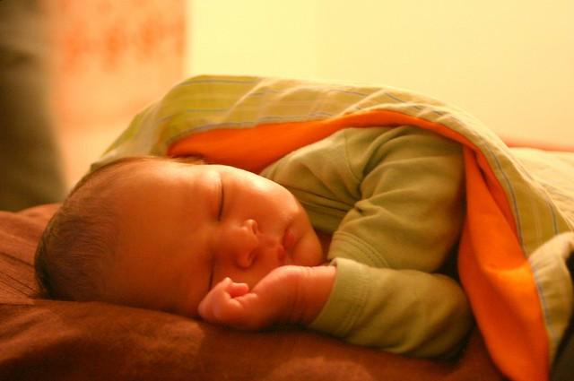 sleepy katan (5 days old)