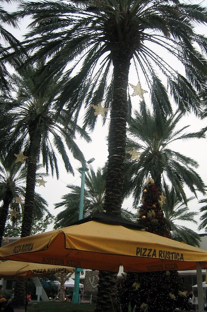 Miami Beach South Beach Lincoln Road Pizza Rustica