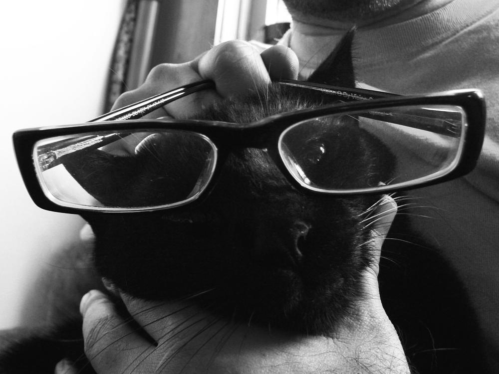 Oskar in glasses