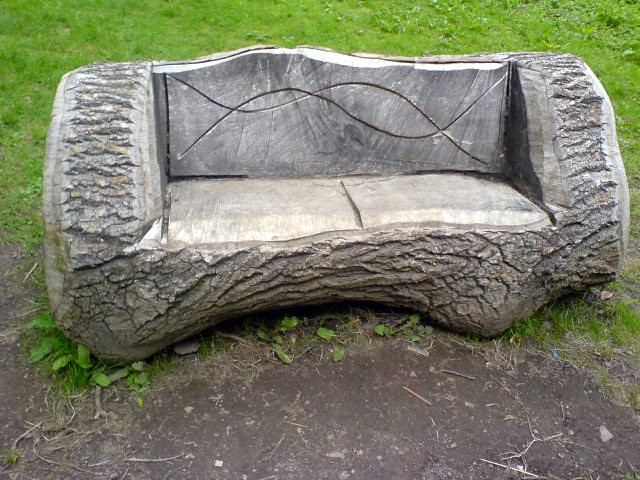 tree trunk bench flickr photo sharing