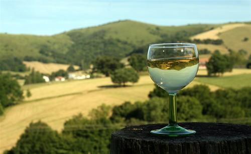The Whole Valley In a Glass of Wine