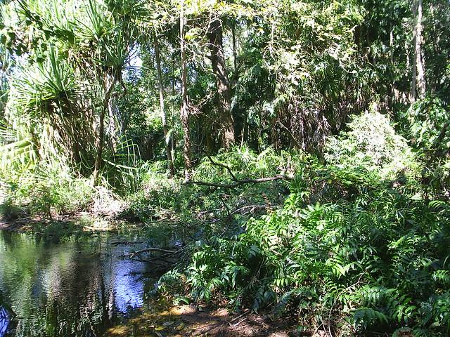 Holmes Jungle Nature Park Cost
