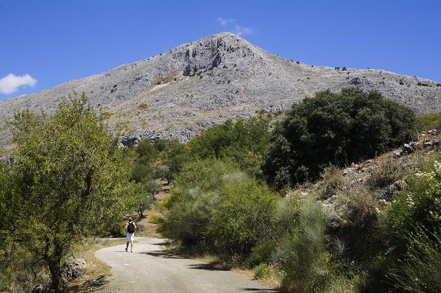 7. Hike