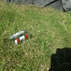 Why do people need to brake bottles on my favorite patch of grass :(