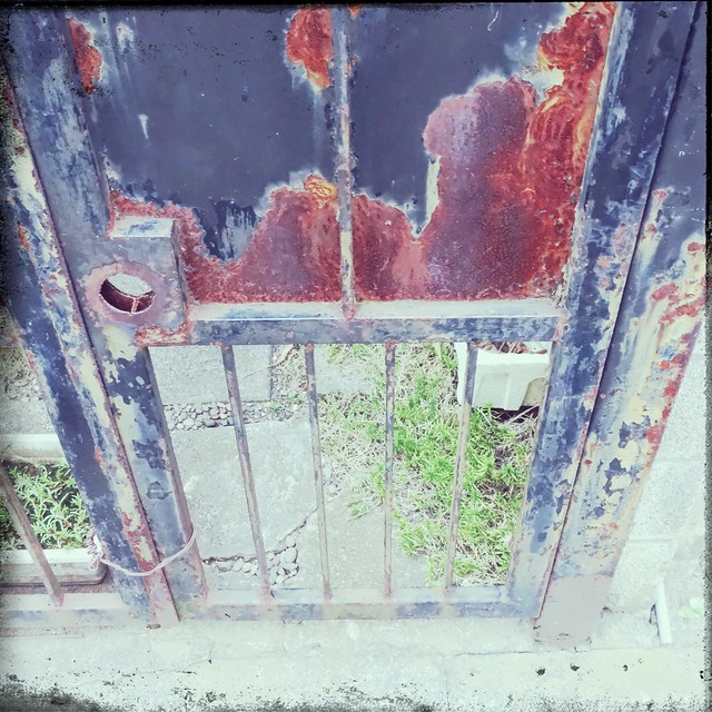 Rusty old gate