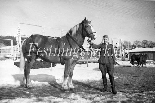 Sarpsborg 1940-1945 (310)