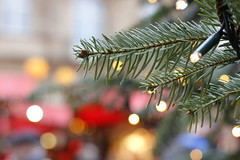 Christmas bookeh