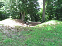 Civil War Fortification at Leesylvania State Park -- Woodbridge, VA, June 28, 2015