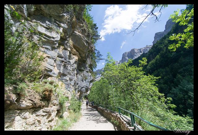 Paseando entre el cañón