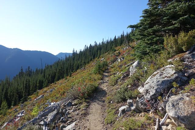 PCT along a hillside