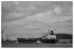 Navio de carga