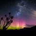 Aurora over the Otago Peninsula by Possums' End