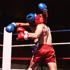 striking combat sports, individual sports, contact sport, sports, combat sport, kickboxing, sanshou, punch, amateur boxing, boxing,