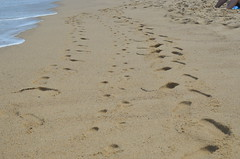 Family footprints
