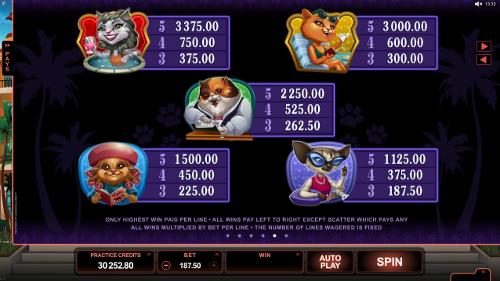 free Kitty Cabana slot payout