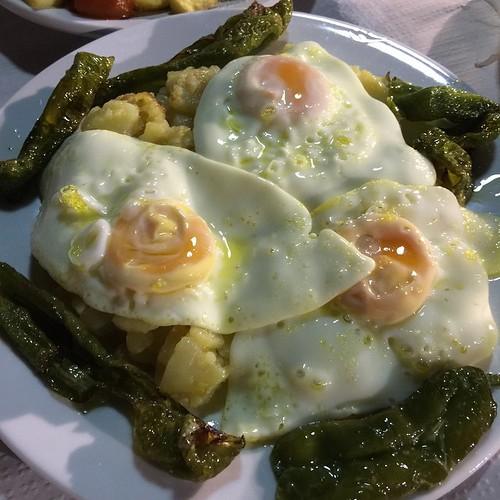 Huevos panadera #paraíso #pueblo #chato #chatomola #pueblo #hinojosadesanvicente #jorgos #aztekaer