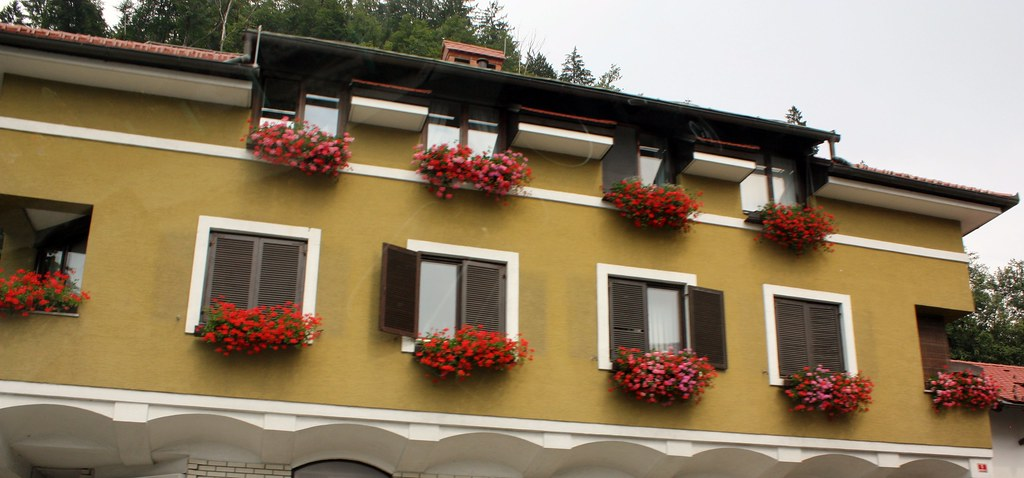 Bohinj Flowers in every window