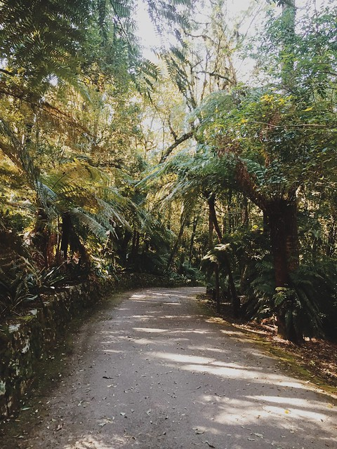 Parque Aldeia do Imigrante, Nova Petrópolis - RS {agosto 2015}