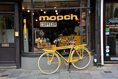 Brighton, Mooch