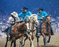 chad rutherford bareback national western stock show don christner-7130