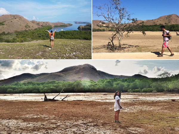 Pulau Rinca - Gambar 1