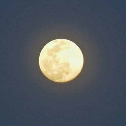 The best moon #moon #nature #bestday #sky