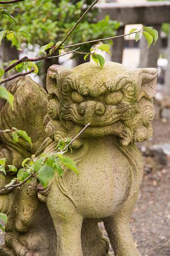shrine 狛犬 神使