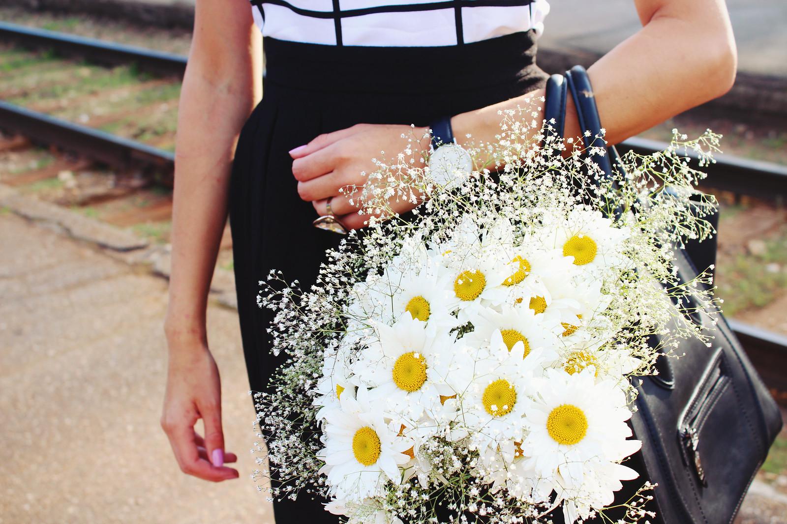 summer-flowers-daisies