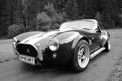 shelby daytona(0.0), race car(1.0), automobile(1.0), vehicle(1.0), automotive design(1.0), antique car(1.0), classic car(1.0), vintage car(1.0), land vehicle(1.0), ac cobra(1.0), sports car(1.0),