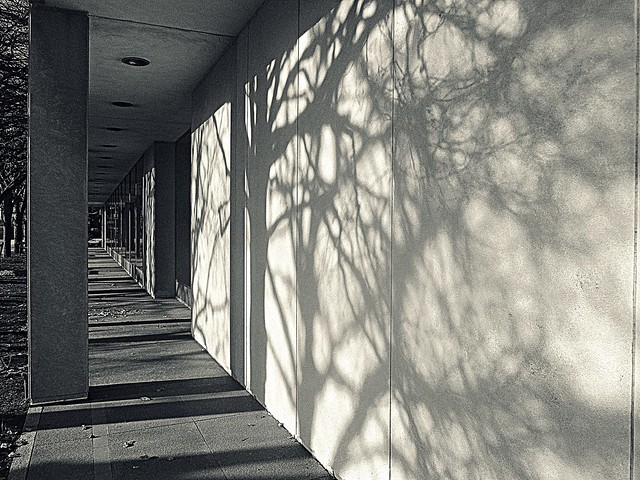 Shadow projections