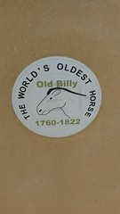 Photo of Old Billy white plaque
