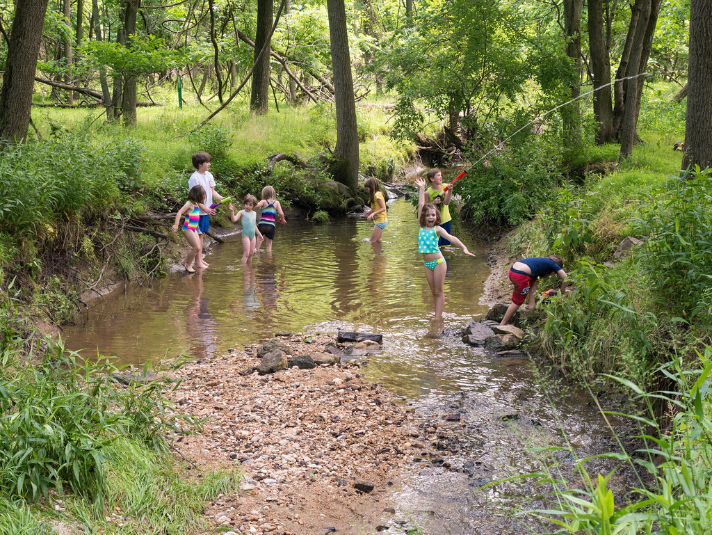 Kids in a creek