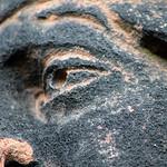 MACRO CHLOE StonefaceStMarys