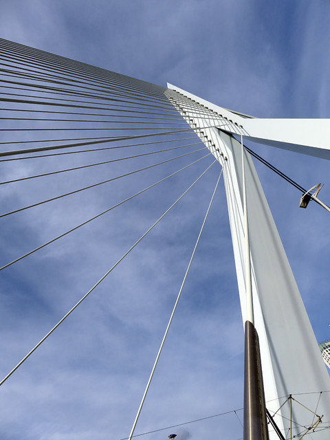 The striking design of the Rotterdam Bridge