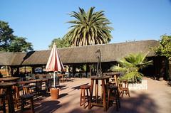 DSC07146 - NAMIBIA 2013