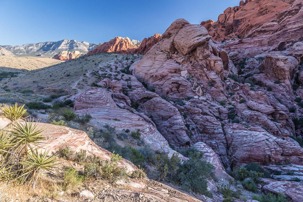 Desert Rock Landscape