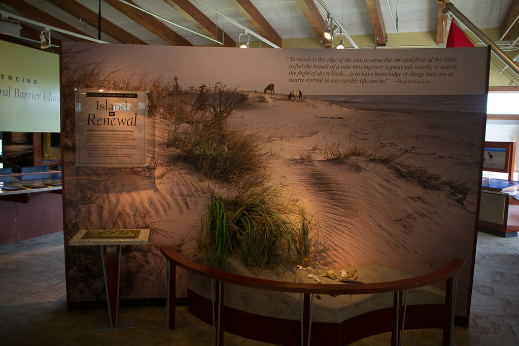 Exhibit at Assateague Visitor Center