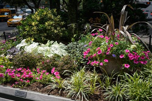 FilipWolak-LSBID-Gardens-8352