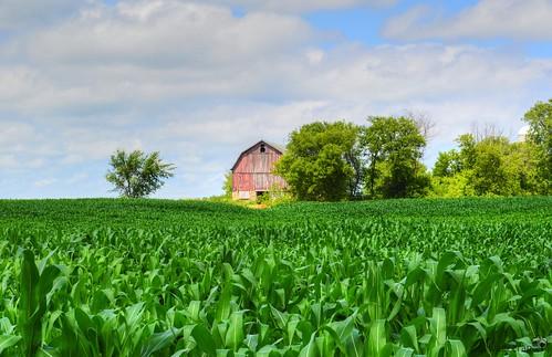 Richfield Farm