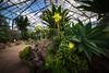 Royal Botanics-05655-FB