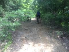 Climbing Tibbs