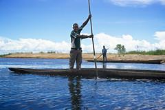 Zambian man rowing on  pirogue, Lealui Island, Barotseland, Zambia