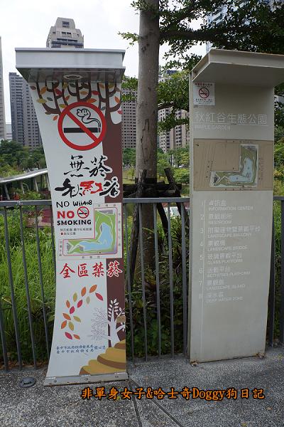台中秋紅谷09