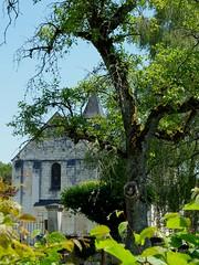 Eglise Saint-Pierre - Photo of Langé