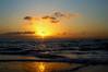 Waialua Ablaze_DSC00395fattal