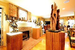 Zebra Wood Pedestals with Ambient Light