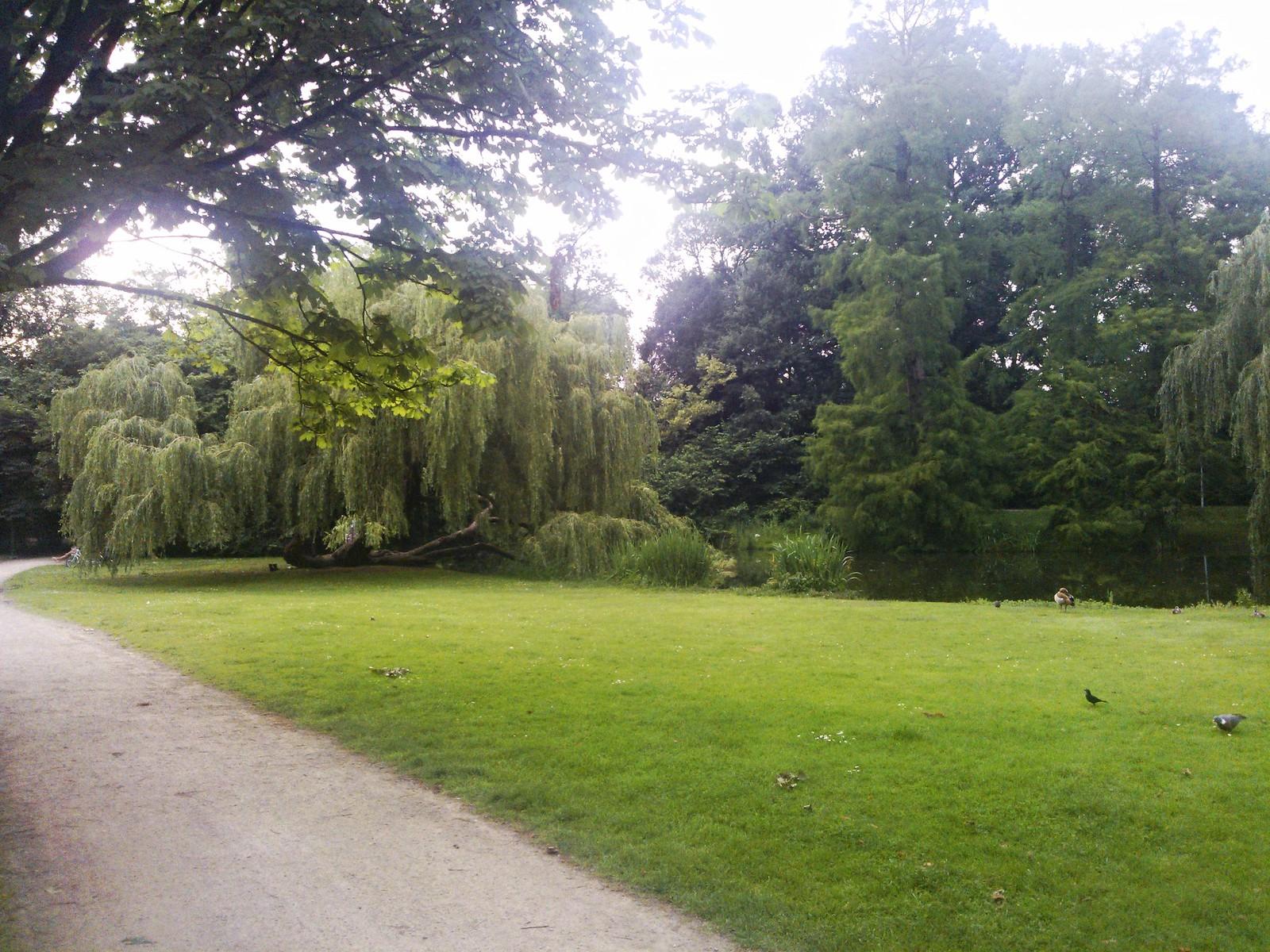 Angoli di Vondelpark