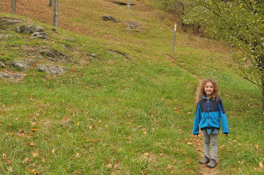 Appalachian Trail near Cloudland Rd, Pomfret, VT