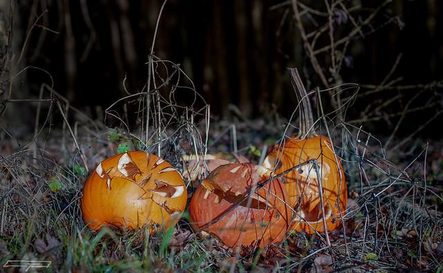 Decomposing remnants of Halloween