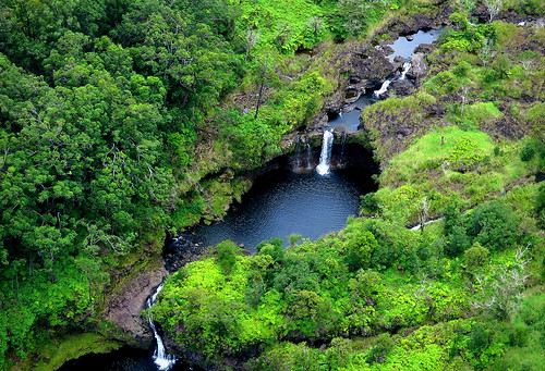 hawaii bigisland hilo forest rainforest creek peterch51 aerialview america usa